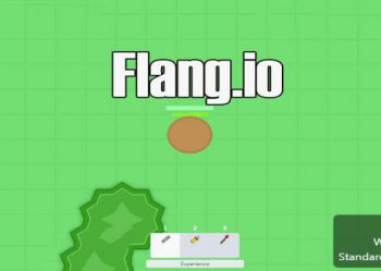 Flang.io